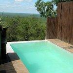 Makwela Dusk suite plunge pool