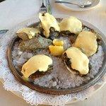 Scampi's Oysters Rockefeller