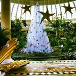 Go during christmas time/new years time, beautiful decor