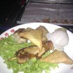 nems, samoussas, brochette de poulet,ravioli poulet