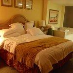 Master bedroom with sauna bath. Room 9333