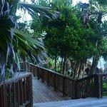 accès à l'un des deck du site hôtelier