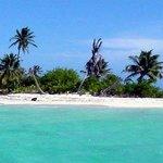 Expédition à Pigeon Cay