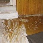 Photo de l'inondation de caca dans notre cave