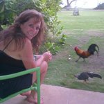 View towards the beach and my wife feeding the chickens and roosters!