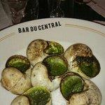 Xxl Snails, pricey, but tasty