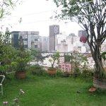 Urban garden!
