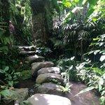 Grounds - path