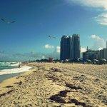La plage face à Ocean drive