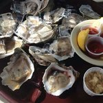 BEST Oysters!