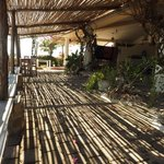 mid-day sun streaming through the bamboo roof of a common area pateo