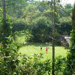 badminton on the mountain (Emau Hill, Amani nature reserve)