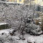 01 dicembre 2014... la prima neve!