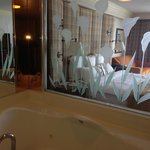 Washroom glass wall