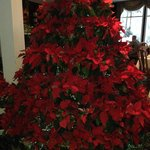 Poinsettia Christmas tree in dining room