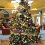 Christmas tree in Beach Tower lobby Christmas 2013