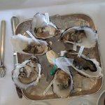 Fantastiche ostriche con etichetta di tipo e provenienza