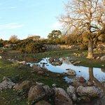 Il parco della Giara al Tramonto