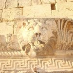 Lion of a Baalbek