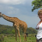 So close to Giraffes