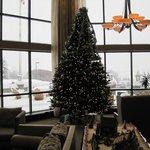 Christmas tree in main lobby