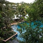 lovely view from the room, tropical trees and the pool