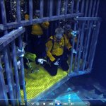 Shark Tank Cage