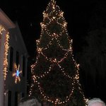 Huge Christmas tree (& nearby menorah) add a great traditional photo opp background