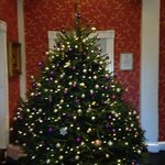 Beautiful tree to welcome guests at Christmas!