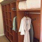 The HUGE closet - 2 hanging areas, many cubby holes, pants press, iron & board, full length mirr