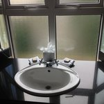 Sink with beautiful windows that open! Jr Suite 301