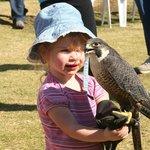 3 year old handling falcon