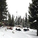 Snowmobile tour, definitely worth the money