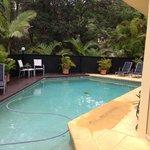 Apartment's pool