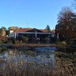 中庭の池(昔は造波プールだったとか)から本館を臨む