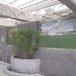 Dirty water 1