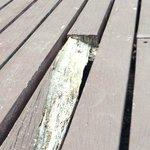 nails at the pool deck