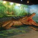 Art in Paradise, Chiang Mai 3D Art Museum