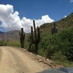 Dirt roads of Cachi Adentro