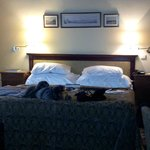 room suite 201 January 4-7th  2014-