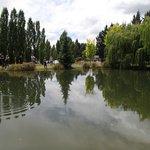The fishing pond