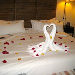 Rose Petals covering our room after his wedding proposal