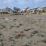 Чистейшие пляжи