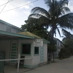 Big Fish Tour caye caulker Belize