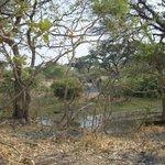 Campsite near the river