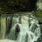 A beautiful water fall