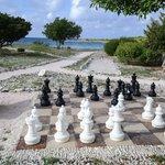 Шахматы в саду