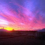 Yurts at Sunrise