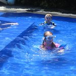 shallow pool for littlies