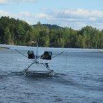 Float plans landing in front on lake